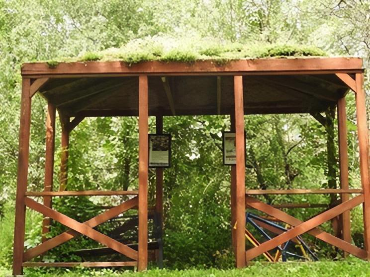 EcoHouse: green roofs, permeable driveway & more!