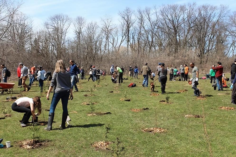 TLC = Tree Loving Care!