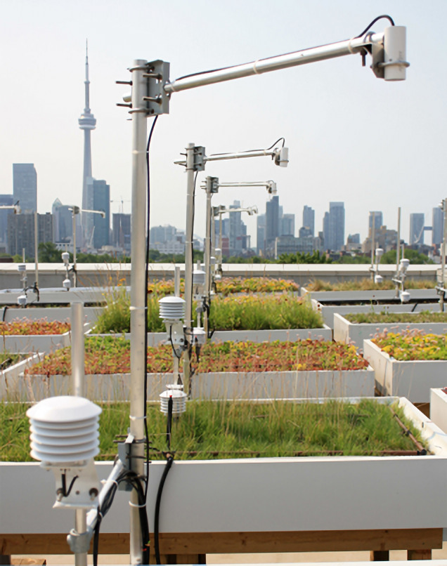 Green Roof innovation here